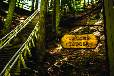 JacobsLadder