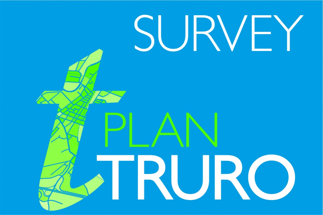 Plan Review Survey